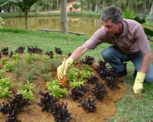 Balconista de Laticínios, Auxiliar de Jardinagem - R$ 1.395,00 - Escala 6x1, ter disponibilidade de horário - Rio de Janeiro